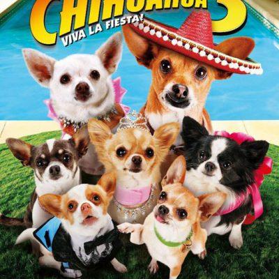 Beverly Hills Chihuahua la Fiesta!
